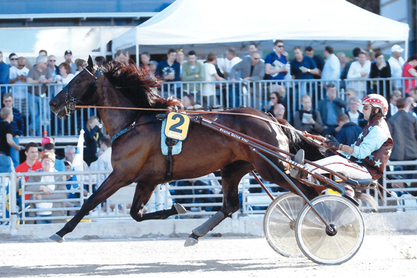 Save The Quick - Solvalla