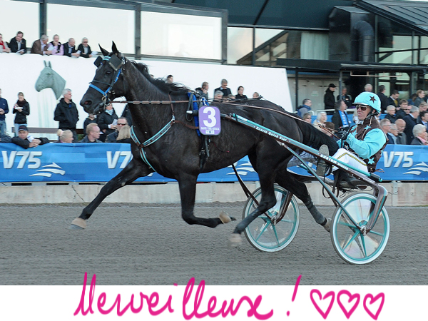 save_the_quick_kihlstrom- solvalla