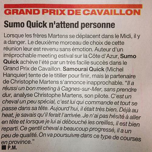 sumo-quick
